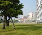 20100520162118.jpg